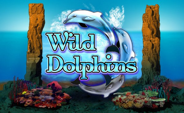 usa online casino dolphin pearl