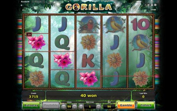 free casino games online gorilla spiele