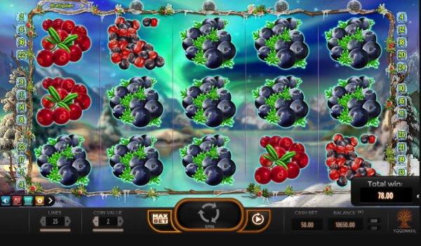 Winterberries Slot Game Reels