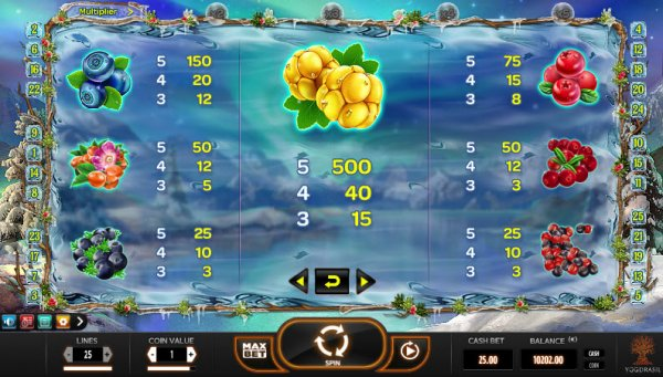 Winterberries Slot Pay Table