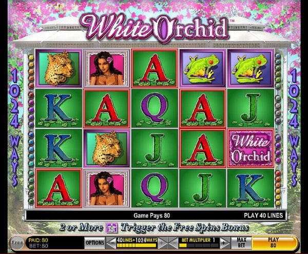 Igt slots white orchid