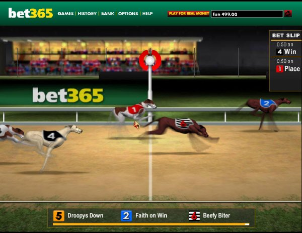 Dogs 3D – Online Casino Virtual Racing Games