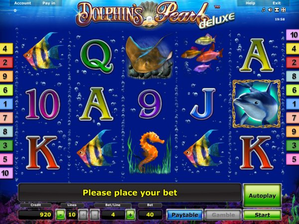 online live casino dolphin pearl