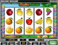 Fruity Fortune Slot Game Reels